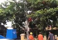 Nam công nhân bị điện giật treo người trên trụ, tử vong