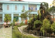 BVĐK huyện Nga Sơn: Xây dựng môi trường y tế xanh - sạch - đẹp