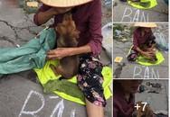 Câu chuyện 'cụ bà bán chó lấy tiền mua thuốc' bất ngờ xuất hiện nhiều thông tin trái chiều