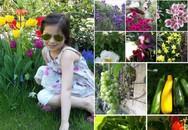 """Sốc ngay lần đầu bước vào khu vườn """"trăm hoa"""" trên đất Đức của bà mẹ Việt khéo tay"""