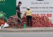 Thanh long Bình Thuận bán lề đường giá 15.000 đồng 2 kg