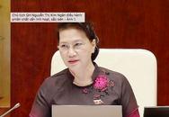 Chủ tịch Quốc hội: Dân bức xúc những người trốn trách nhiệm hình sự bằng bệnh án tâm thần giả