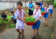 Học sinh tiểu học trồng rau bán lấy tiền giúp bạn