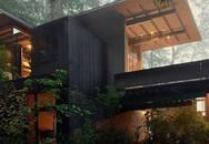 """Nhờ thiết kế đặc biệt mà biệt thự 60 năm giữa rừng gây """"choáng"""" vì vẫn đẹp và hiện đại"""