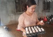 Hot girl báo chí bỏ phố về quê nuôi lợn, thả gà làm giàu