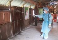 Đắk Lắk: Tăng cường công tác truyền thông phòng chống bệnh sốt rét