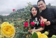 Vườn hoa hồng đẹp như tranh trị giá tiền tỷ ở Sơn La