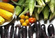Khu vườn 1000m² giúp mẹ Việt ở Nhật thỏa sức trồng đủ loại rau quả, cây trái của quê hương