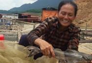 Thu bội tiền nhờ bán cá lồng đặc sản sông Đà dịp Tết đến
