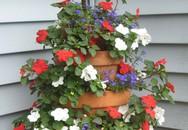 Cách đơn giản và dễ làm để tạo tháp chậu cây cho hiên nhà bạn thêm sinh động