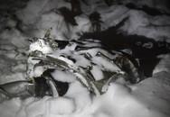 Người đàn ông thoát chết vì không lên máy bay Nga rơi