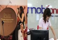 Thanh tra kiến nghị giao hồ sơ vụ MobiFone mua AVG cho cơ quan điều tra