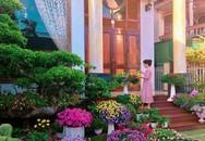 Ngẩn ngơ trước vườn hoa dạ yến thảo rực sắc trước sân nhà của bà mẹ xứ Huế