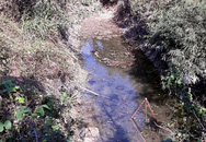 Phát hiện thi thể người đàn ông chết bất thường tại hồ nước