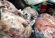 Hà Nội: Phát hiện nhiều tê tê, tay gấu trong bao tải