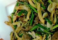 Lạ miệng nhụy hoa gạo xào thịt bò