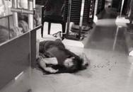 Con gái chém mẹ tử vong rồi nhảy cầu tự vẫn