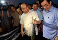 Thủ tướng mua 10kg cá của ngư dân Quảng Trị