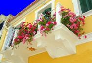 """""""Ngất lịm"""" với những ban công rực rỡ sắc hoa trong nắng hè"""