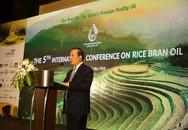 Hội nghị dầu gạo quốc tế lần thứ 5: Quy tụ các chuyên gia đến từ 20 quốc gia