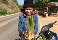 """Chị gái người Thái """"đút túi"""" kha khá mỗi ngày nhờ bán măng loi rừng"""