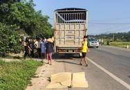 Nỗi đau xé lòng cả gia đình tử nạn vì xe tải
