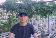 Bình Định: Anh chàng đẹp trai thu 100 kg rau quả từ khu vườn sân thượng