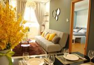 Thanh toán trước chỉ 330 triệu, sở hữu ngay căn hộ 100% view sông tại bắc Sài Gòn