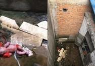 Bé sơ sinh sống sót thần kỳ sau khi nghi bị ném qua bức tường cao gần 2m