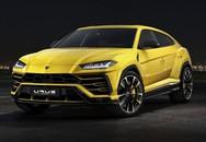 """""""Lamborghini' Tàu long lanh hơn hàng xịn giá 350 triệu"""