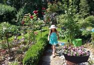"""Khu vườn đẹp như mơ của người chồng dành cả """"thanh xuân"""" đi tìm các loại hoa hiếm về tặng vợ"""