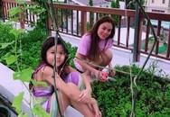 Vườn rau và cây trái ăn không hết phải đem cho của Hoa hậu Phương Lê