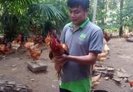Mới 27 tuổi, chàng trai trẻ đã là chủ trang trại gà mang lại thu nhập 200 triệu đồng/năm