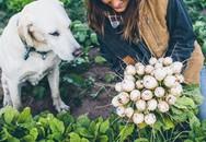 """Trang trại toàn rau xanh, cây trái mát lành của cặp vợ chồng blogger ẩm thực thích """"sống chỉ để vui chơi"""""""