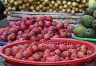 Mận Trung Quốc ồ ạt về chợ