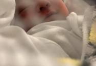 Thúy Diễm công khai con trai đầu lòng với Lương Thế Thành sau một tháng bí mật hạ sinh