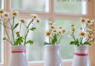 Những cách cắm hoa sáng tạo khiến nhà bạn lúc nào cũng đẹp như một vườn hoa