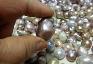 Bất ngờ đáy ao chứa 1.000 viên ngọc quý ở Vĩnh Phúc