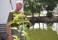 Cứu bé trai đuối nước, cụ ông phát hiện từng cứu bố đứa trẻ 30 năm trước
