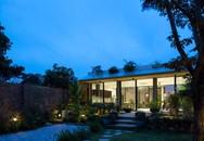 Ngôi nhà cấp 4 chan hòa ánh nắng và cây xanh mang lại vẻ yên bình đến khó tin ở Hà Nội