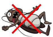 """Những mẹo hay khiến côn trùng """"một đi không trở lại"""""""