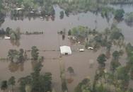 Ít nhất 7 người thiệt mạng do bão ở Mỹ