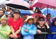 Hải Phòng: Hàng nghìn người phải đội mưa đứng ngoài lễ hội chọi trâu Đồ Sơn