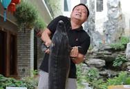 Bỏ nghề xây dựng, chuyển sang nuôi cá khổng lồ kiếm chục tỷ/năm