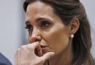 Rộ tin Angelina Jolie bỗng cầu xin quay lại với Brad Pitt vì sợ anh tái hợp Jennifer Aniston