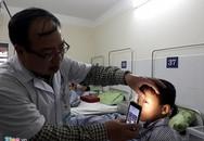 Bé trai 8 tuổi nhập viện vì chó cắn vào mắt