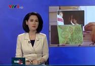 Bán bùa thi đỗ giá 3,5 triệu đồng cho sinh viên Sài Gòn
