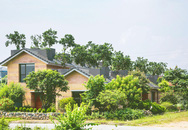 Ngôi nhà đất có vườn bưởi trĩu quả trên mái ở Hà Nội