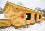 Ngôi nhà 48m2 đẹp như dát vàng, được xây từ 20 ngàn bắp ngô