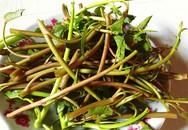 Công dụng chữa bệnh bất ngờ của rau muống mà nhiều người không biết
